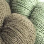 Artemisia / Salvia Argentea